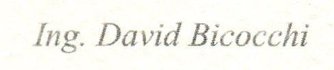 059 - David Bicocchi.png